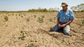 Expert: TOP-7 motive de ce AGRICULTURA contează